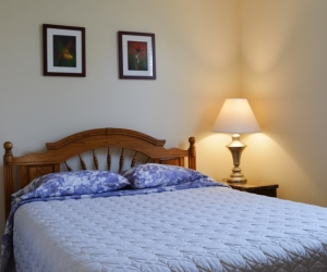 Cottage Cassie's Castle - Starting @ $258 / night contact us for availability/reservation